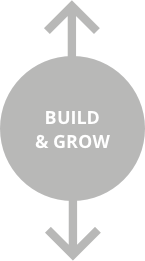 Build and Grow Diagram Title